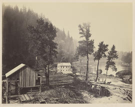 """View from Eagle Creek. O.R.R. Cascades."" (Mammoth 445)"