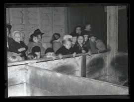 Children next to animal pen, probably at Pacific International Livestock Exposition