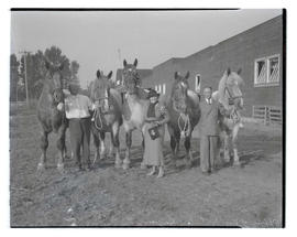 Mrs. E. F. Peffer and two unidentified men with Belgian horses, probably at Pacific International...