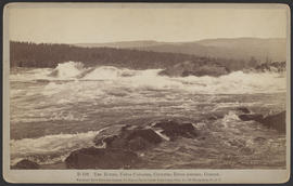 """D166. The Rapids, Upper Cascades, Columbia River Scenery, Oregon."""