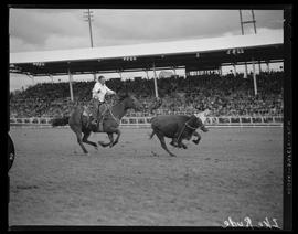 Ike Rude roping at the Pendleton Round-Up