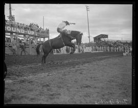 Jack Spurling riding at the Pendleton Round-Up