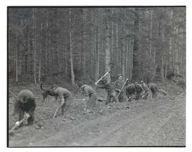 Civilian Conservation Corps workers clearing ditch in Mount Hood National Forest
