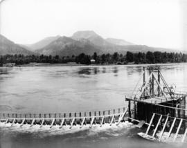 Fishwheel on Columbia River