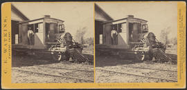 """Betsey Baker, Cascades, Columbia River."" (Stereograph 1251)"