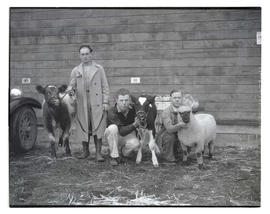 Men posing with calves and sheep