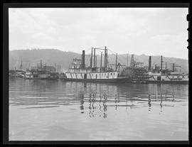 Steam boats on Willamette River, Portland