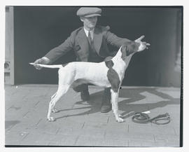 Man with dog holding pose