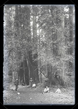 Five unidentified people posing in forest