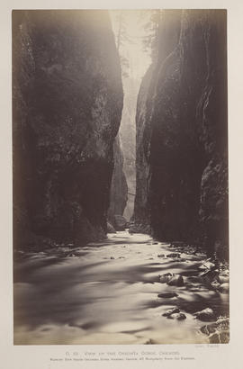"""O.19. View up the Oneonta Gorge, Cascades."""