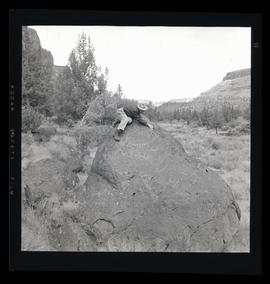 Man on top of petroglyphs at Cove Palisades State Park