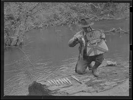 Fisherman with basket and trout at season opening