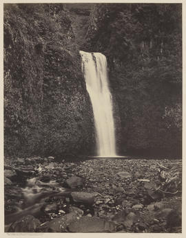 """Lower Multnomah Falls. Columbia River."" (Mammoth 424)"