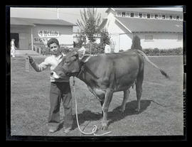 Boy with prize-winning cow
