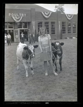 Girl and two calves