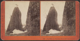 """The Needles, Columbia River Scenery, Oregon."" (Stereograph E30)"