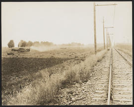 Harvesting Wheat by Railroad Tracks