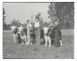 Bobby King and three unidentified boys with cattle, probably at Pacific International Livestock E...