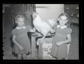 Girls with rooster