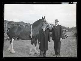 Governor Charles H. Martin and T. B. Wilcox with grand champion mare