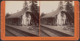 """Bonneville Station, Columbia River Scenery, Oregon"" (Stereograph E45)"