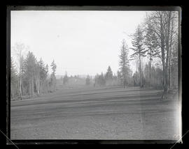 Golf course fairway