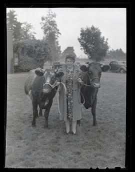 Woman with two cows