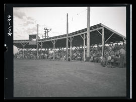 Crowd sitting in bleachers