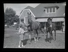 Man and boy with horses