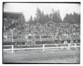 Spectators at racetrack