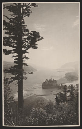View of Lower Columbia River near Westport, Oregon
