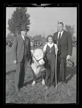 Two men and young woman with steer or heifer, probably at Pacific International Livestock Exposition