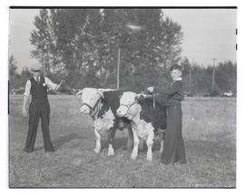 Bobby King and unidentified boy posing with cattle, probably at Pacific International Livestock E...