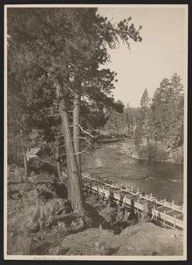 Track on Deschutes River