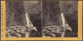 """Lower Multnomah Fall, Columbia River."" (Stereograph 1241)"