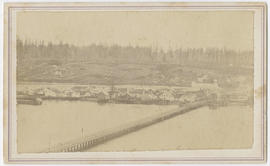 Swantown Bridge, Olympia, Washington