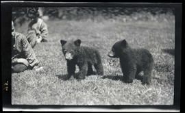 William Jr. and Phoebe Katherine Finley with bear cubs