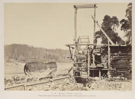 """O.14. Salmon Wheel, Cascades."""