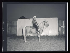 First prize winner at the Western Horse Show