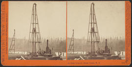 """At Port Ludlow, Puget Sound, W. T."" (Stereograph 5258)"