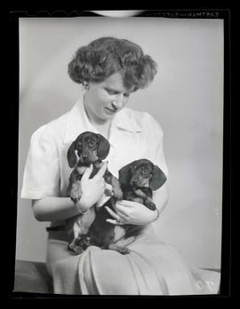 Woman holding two dachshund puppies