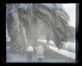 Two children in front of palm tree, three-quarters portrait