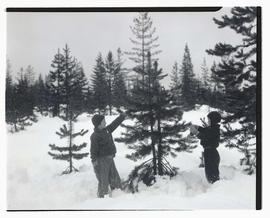 Two unidentified children hanging food on tree in snowy forest