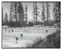 Ice skaters on frozen pond