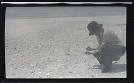 Irene Finley in a tern colony