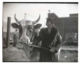 Woman with bull
