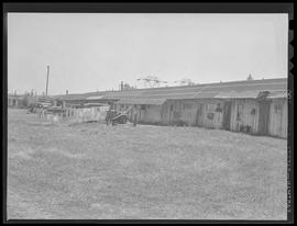 War worker homes at Bagley Park stables near Vancouver