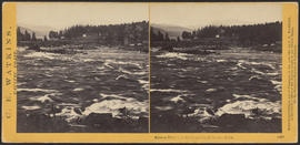 """Salmon Fishing in the Cascades, Columbia River."" (Stereograph 1267)"
