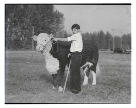 C. N. Reed of Mikkalo, Oregon, with steer, probably at Pacific International Livestock Exposition