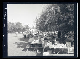People seated at picnic tables during outdoor company event
